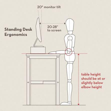 posture proper ergonomics for a standing desk