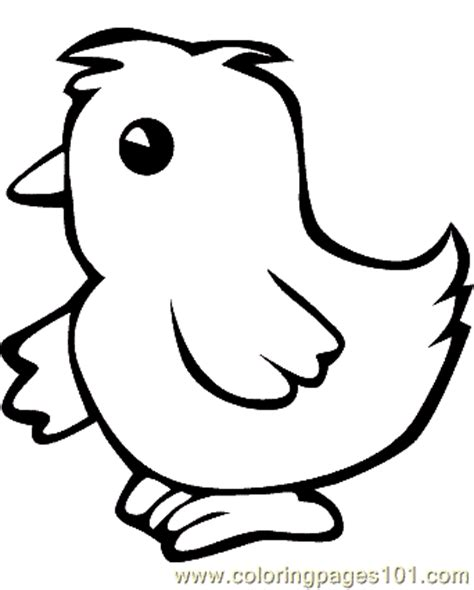 chicken head coloring page chicken coloring page 08 coloring page free chick