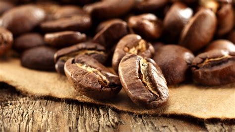 coffee bean wallpaper for walls coffee beans wallpaper 42421 1920x1080 px hdwallsource com