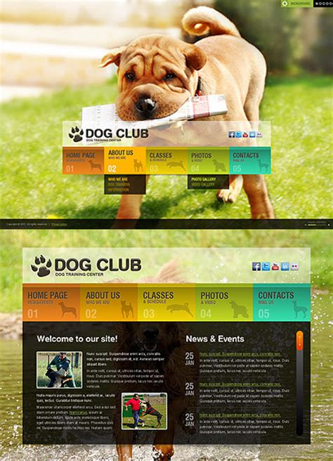 themes bootstrap pets dog training html5 template id 300111382 from bootstrap