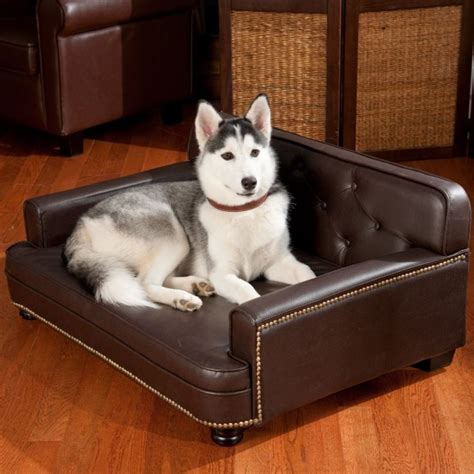 best leather couch for dogs best fabric couches for dogs homesfeed
