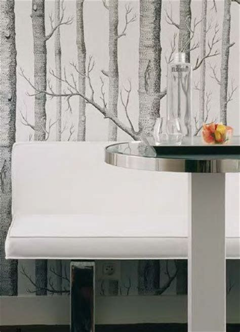 decorative trees for the home top 20 ways to bring the outside in through birch