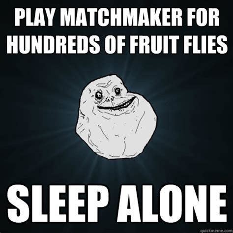 Sleeping Alone Meme - play matchmaker for hundreds of fruit flies sleep alone