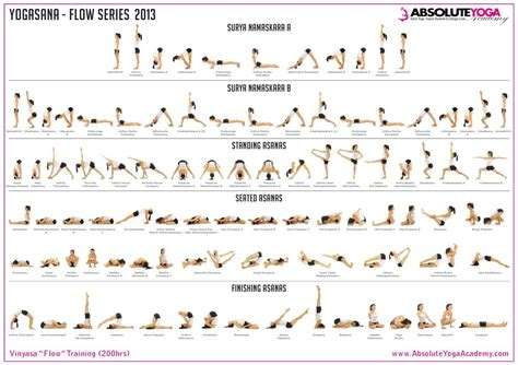 ashtanga poses chart absolute vinyasa course pose chart http www