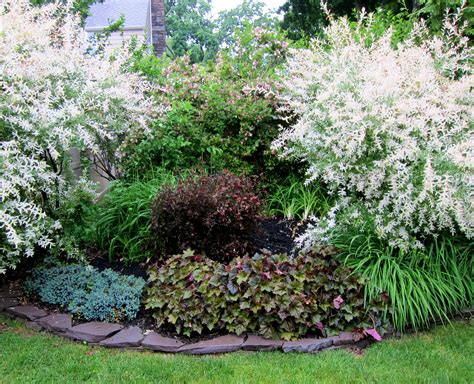 Garden Shrubs Ideas Http Www Wp Content Gallery Lanscape Garden Design Shade Landscape Shrubs Island Planning