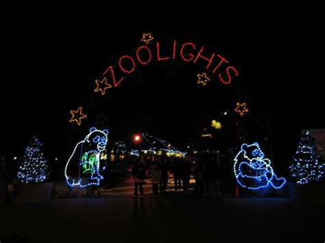 dc zoo lights collection lights washington dc pictures best