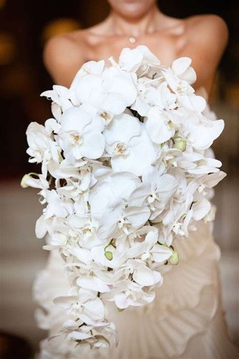 best 25 orchid wedding bouquets ideas on orchid bouquet white orchid bouquet and