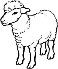 clipart de ovejas para colorear imagui dibujo de oveja dom 233 stica de frente para colorear