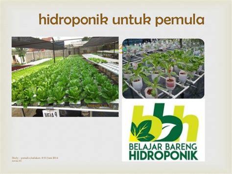 tips berkebun hidroponik mengenal hidroponik untuk pemula share the sebuah catatan kecil tentang hidroponik untuk pemula