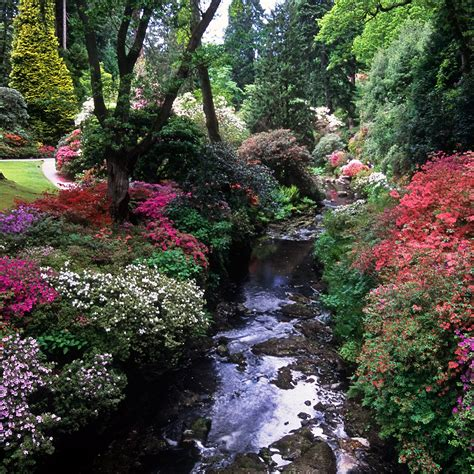 Garden Conwy Valley Bodnant Gardens Conwy Wales Uk River Banks Covered In