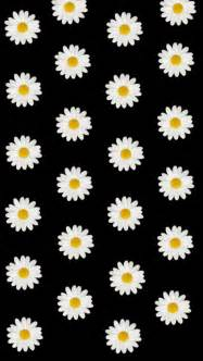 Used this transparent daisy picture