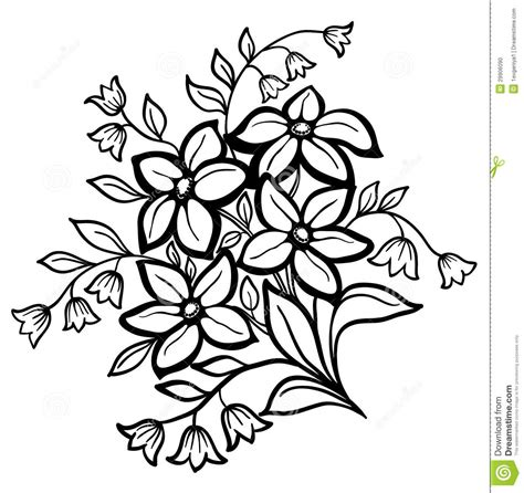 Flower Outline Black And White by Black And White Sunflower Clipart Panda Free Clipart Images