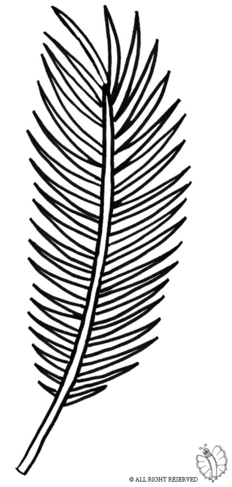 free printable palm leaves print palm leaf for coloring