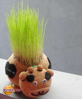 Boneka Horta Pelihara Tumbuh Rumput Asli boneka horta boneka tanaman anautami17
