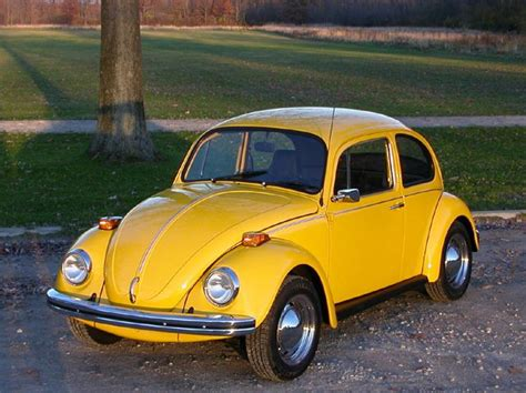 punch buggy car yellow the 25 best yellow punch ideas on pinterest yellow