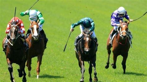jockeys face tougher whip penalties  british horseracing authority crackdown bbc sport