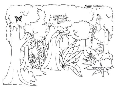 Easy Rainforest Coloring Pages by Pin Jungle Clipart Colouring 3 Simple Jungle Coloring Page