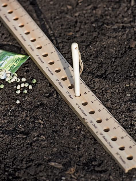intervale seed  plant spacing ruler gardeners supply