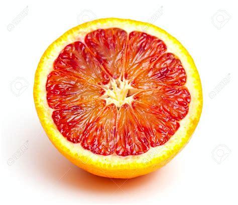 blood orange blood orange related keywords blood orange long tail