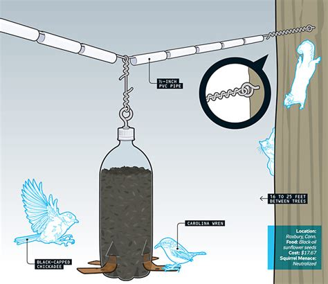 how to build a squirrel proof bird feeder