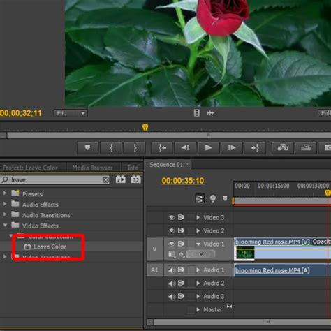 how to use the leave color effect in adobe premiere pro how to use the leave color effect in adobe premiere howtech