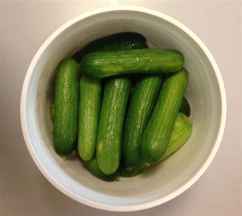 kosher pickles kosher dill pickle recipe solomon food writer