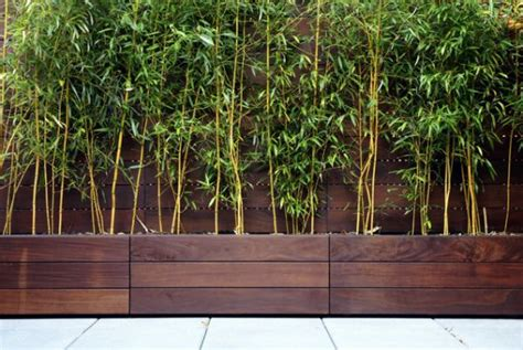 Modern Wood Planter by Garden Design Trends With Planters