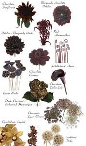 names of garden flowers flower names by color flowers flower and floral