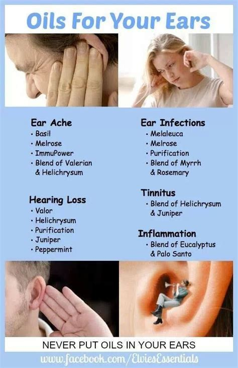 essential oils for ear infection living essential oils ear ache ear infection hearing loss living