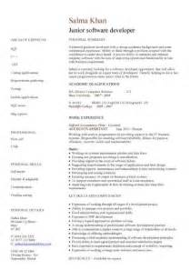 junior software developer cv sle resume writing