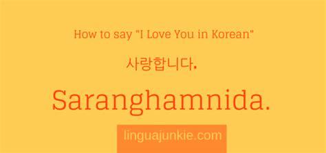 korean phrases 15 phrases for s day more