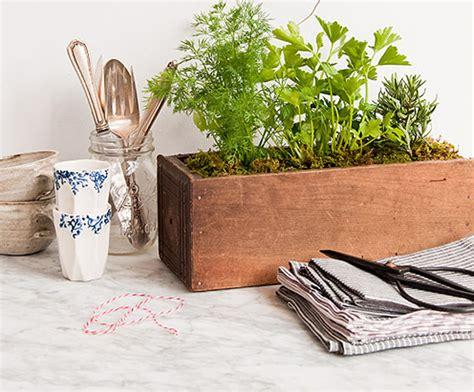 Kitchen Bench Herb Garden 5 Kitchen Herb Garden Ideas Wallspan