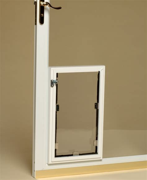 Glass Doggie Doors Doors Denver Strikingly Beautiful Door Denver Pet Owners The Power Pet Door