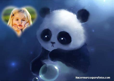 Selimut Bonita Panda No 1 marcos de animales marcos para fotos gratis part 2