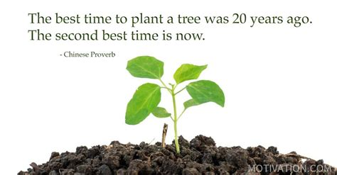 best time to plant the best time to plant 28 images i was 20 years at