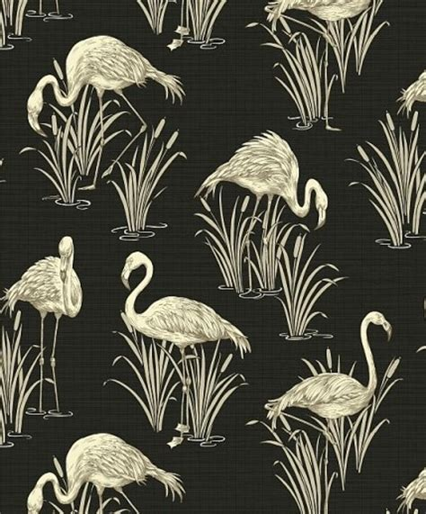 flamingo wallpaper black and white flamingo wallpaper flamboyant eye catching