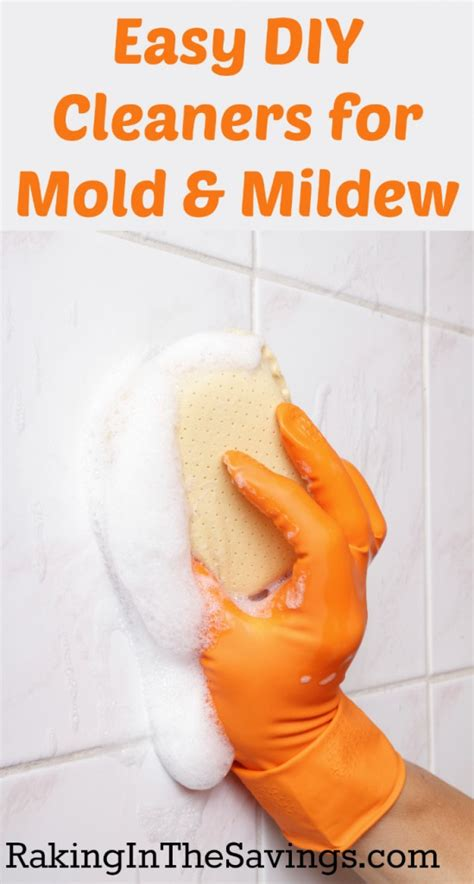 diy mold mildew cleaners mold removal