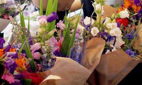fiori primaverili fiori primaverili ecco tutte le variet 224 leitv