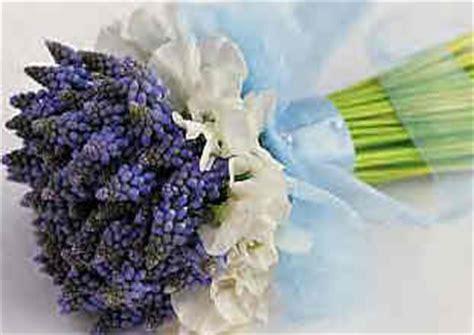 fiori bulbosi bouquet da sposa con i muscari