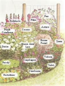 Butterfly Garden Layout The World S Catalog Of Ideas