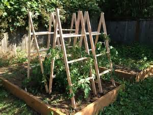 Homemade tomato cages for pinterest