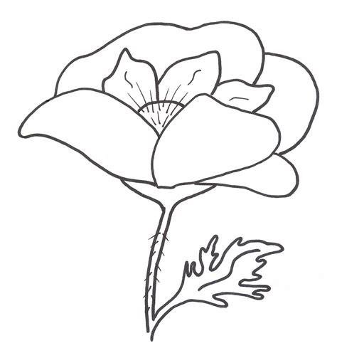 fiori da copiare disegni facili da copiare disegni da colorare imagixs