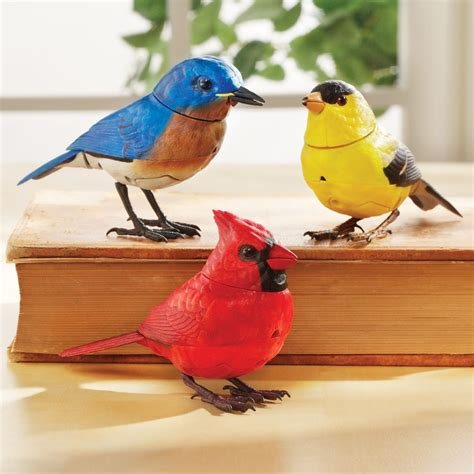 Cardinal Home Decor by Motion Activated Singing Birds National Geographic Store
