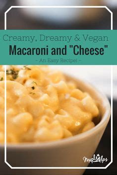 dreamy creamy pasta salad best macaroni and cheese with crazy noodles recipe on