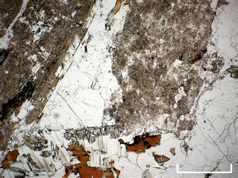 orthoclase thin section cambridge rocks minerals fossils