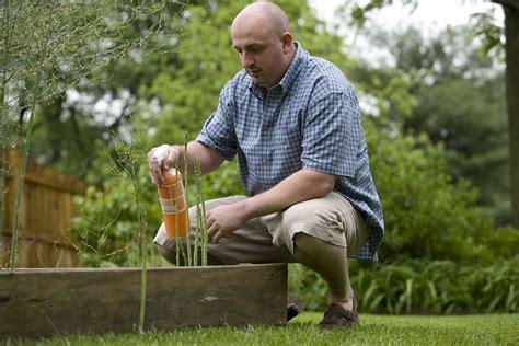 homemade pesticides   flower garden