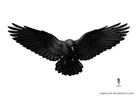 open wings flying crow tattoo design by ragnarulf