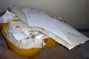 asbestos removal cost absolute asbestos solutions ltd