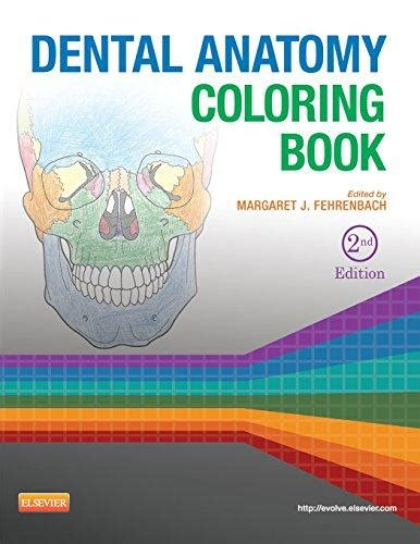 anatomy coloring book 2nd edition isbn 9781455745890 dental anatomy coloring book 2nd