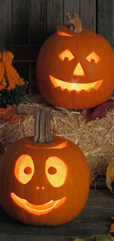history of pumpkins at the history pumpkins and